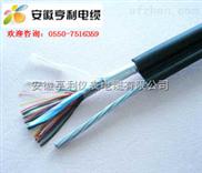 ZR-DJFPVR-ZR-DJFPVR電纜(造紙行業)計算機電纜