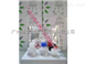 Panbio登革热快速检测试剂价格,规格