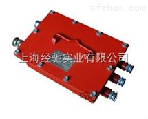 DXJ660/24-K隔爆兼本质安全型电源控制箱(KXJ660/24-K)