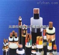 天津电缆总厂YJV22 YJV—电压6/10KV《优质量》