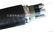 供應小貓牌 NH-VV22 鎧裝防火電纜 發貨及時