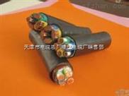 低压电缆:VV 电力电缆Z新价格