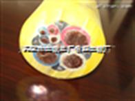 销售MYPT矿用电缆3*35+3*16/3【纯铜】
