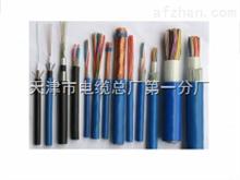 ZRC-HYA-800对-阻燃通信电缆