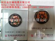 YJY23 0.6/1kv聚乙烯护套铠装低压电缆