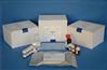 牛组织金属蛋白酶抑制因子4(TIMP4)ELISA试剂盒
