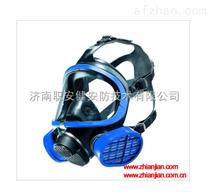 出厂价德尔格X-plore 5500全面罩