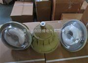 高效节能-环保ZCD1130-YQL50免维护节能防爆灯价格