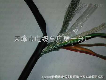 河北阻燃计算机电缆ZRC-DJYV规格
