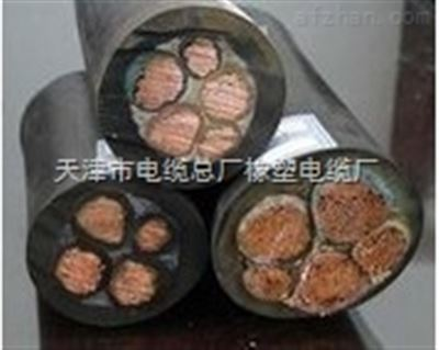 YZW橡套软电缆,YZW 3*2.5橡胶电缆450/750V