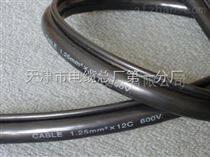 QXFW-J行车专用(吊篮线)橡套软电缆