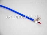 计算机电缆:DJYJP2V(R)P2,DJYJVP3
