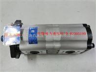 长源双联泵CBTL3-F316-F308-AF&