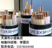 纯铜芯NH-RVV2*2.5平方监控电源线 北京Z新报价