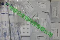 專供默沙東埃博拉抗體免疫試劑(條)