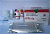 裸鼠环加氧酶2(COX-2)ELISAshi剂盒