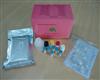 ya免疫球蛋白E(IgE)ELISAshi剂盒