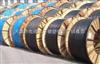 专业生产 ZA-YJV阻燃电力电缆 天缆集团