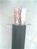 双屏蔽计算机电缆 DJYPVP 3*2*0.75 天缆三厂