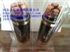 ZR-YJV22 3*50+1*25阻燃耐火电缆供应